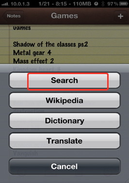 iPhone context menu option that allows you to search the web for a word