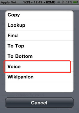 Speak any paragraph with Action menu plugin Voice