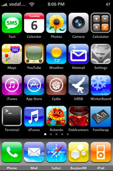 The iPhone software holds the home screens icons  of the iPhone